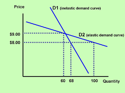 Section 2 Elasticity And The Slope Of The Demand Curve Inflate Your Mind