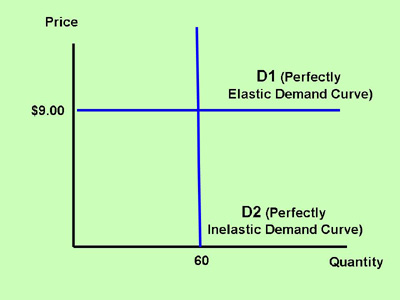 Section 2 Elasticity And The Slope Of The Demand Curve Inflate